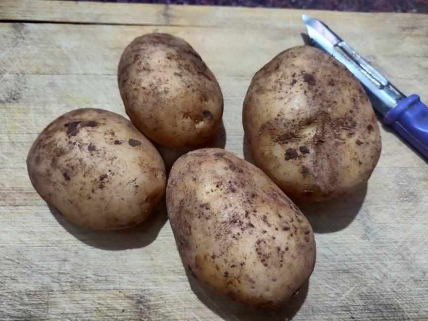 coin_potato_fry - 187136433_528766198487249_977742073617515095_n